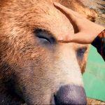 【FARCRY5】プレイ日記#6 クマ好きにはたまらない・・・からの洗脳